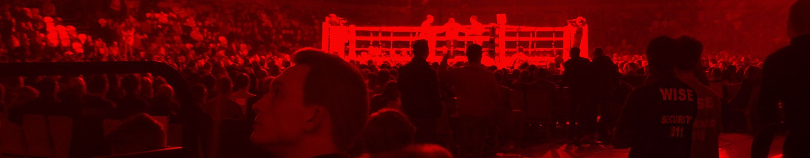 Wise Security Services at boxing events
